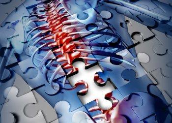 Создана технология, позволяющая восстанавливать поврежденные нейронные связи