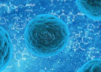 Обнаружена молекула, играющая более значительную роль при раке, чем считалось ранее