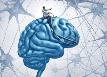 Мозг на дистанционном управлении