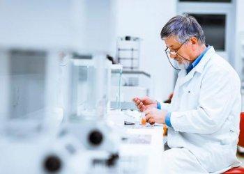 Создан полимер, способный предотвращать распространение вредоносных видов грибов