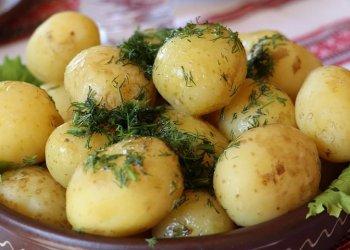 Як вирощувати і готувати картоплю з користю для здоров'я