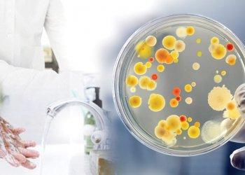 Як вберегтись від гепатитів: шляхи передачі і профілактика