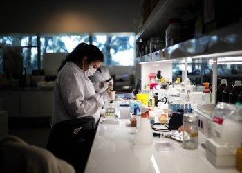 Генетики выяснили, почему носители синдрома Дауна редко страдают от некоторых видов  опухолей
