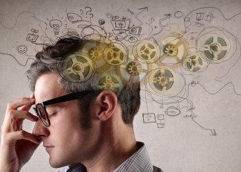Обнаружено, что пищеварительный гормон влияет на работу памяти