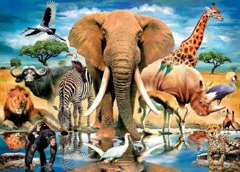 Найдено возможное объяснение природы «шестого чувства» у животных