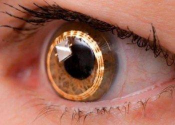 Учёные смогли впервые восстановить зрительный нерв с помощью генной терапии