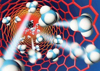 Созданы нанокапсулы, способные «взламывать» межклеточный обмен