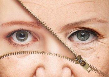 Ученые: кожу человека можно заставить регенерироваться