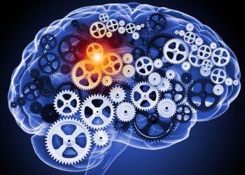 Новый лекарственный препарат может замедлить снижение когнитивных функций при болезни  Альцгеймера